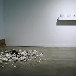 ceramic heads broken and on the floor