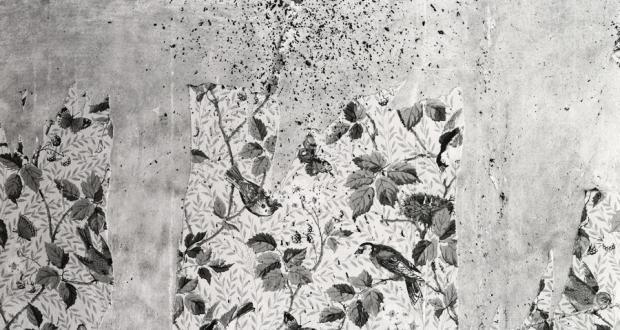 Matt Austin, Charleville Birds (wallpaper), archival pigment prints, 2008
