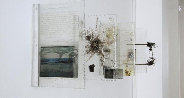 "Image of Heidi Norton: ""The Distance Between Things,"" plant, resin, paint, acrylic, celluloid, photographic transparencies, petrified wood, lenses, mirror, 2013"