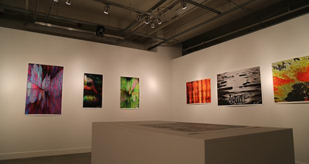 Gallery shot of work by Ty P. Carroll