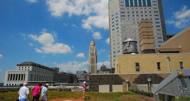 Rooftop Garden Tour